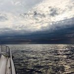 24時間耐久!NYでマグロ釣り!ツナフィッシング アメリカ旅行
