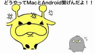 AndroidとMacが繋げない!!こいつでファイル転送できちゃうぞ!